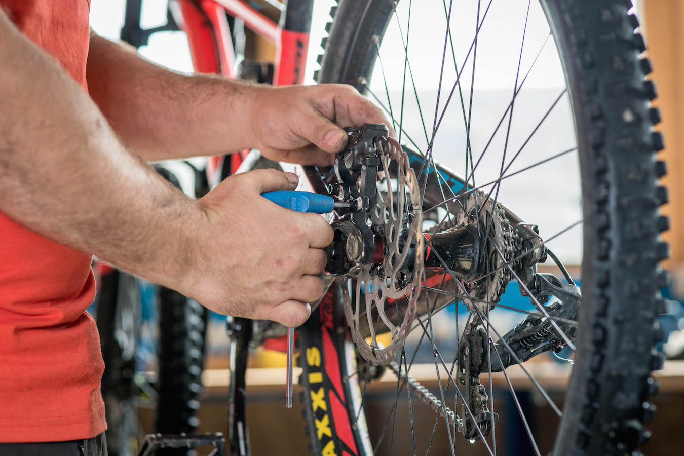 Perfect service for your bike at Sport Mitterer